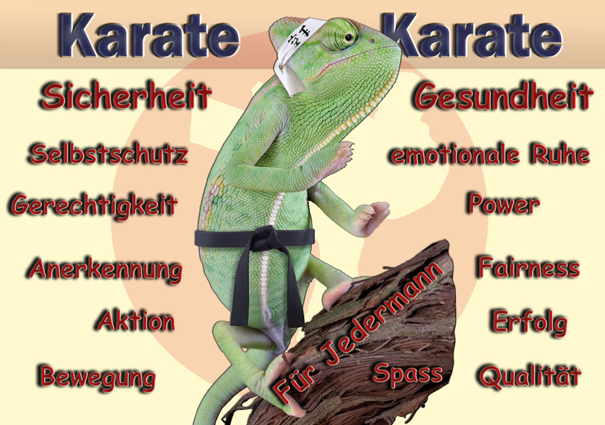 karate-bad vilbel